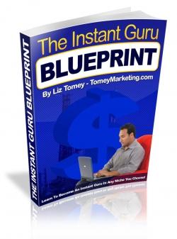 The Instant Guru BluePrint