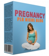 Pregnancy PLR Niche Blog V2 Private Label Rights
