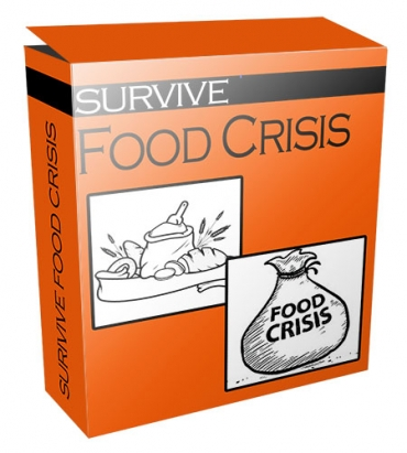 Survive Food Crisis Flipping Niche Blog
