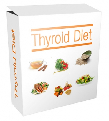 New Thyroid Diet Flipping Niche Blog