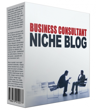 Done-For-You Business Consultant Niche Site