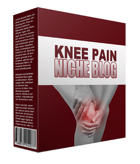 New Knee Pain Flipping Niche Blog