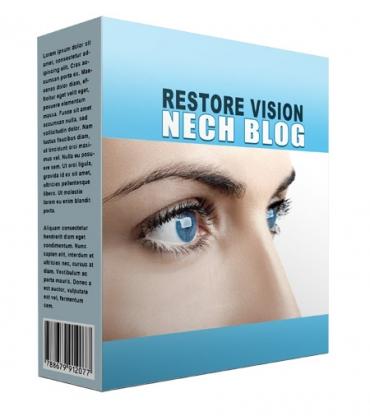 New Restore Vision Flipping Niche Blog